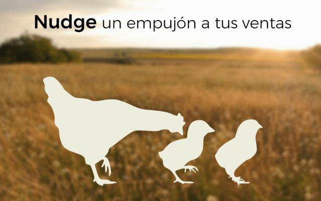 Pollo Cocido -Nudge-un-empujon