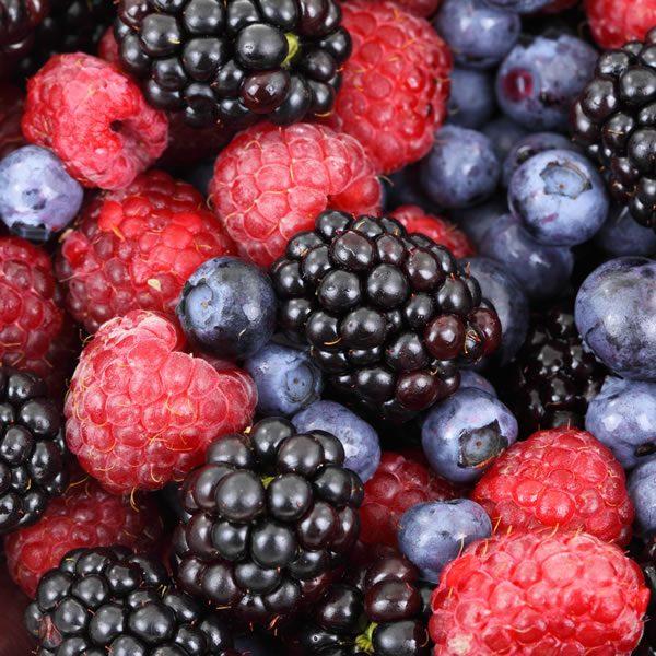 Mix de Frutos Rojos congelados IQF Grado A